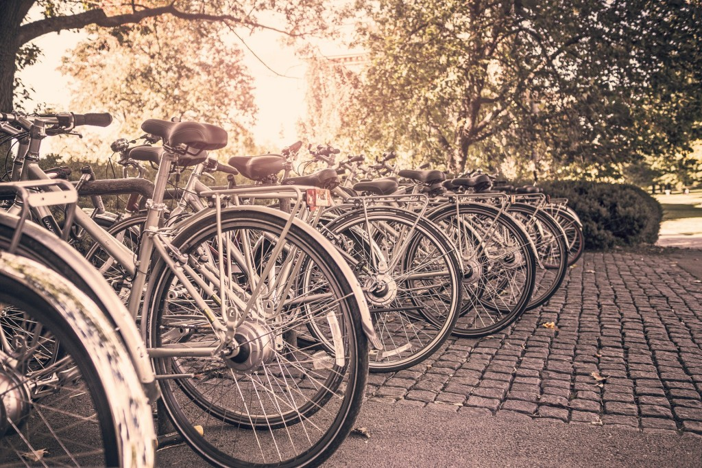specialist cycling insurance - image of bikes